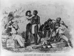 Inspection and Sale of a Slave