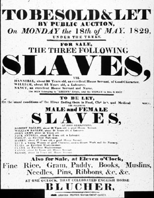 Slave SalePoster