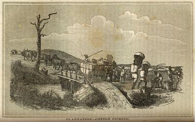 Cotton Harvest, U.S. South,1850s
